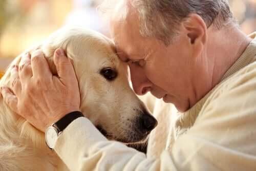 Padrone con cane anziano