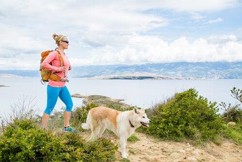 tra le attività estive da fare con il proprio cane, il trekking è una delle più sane
