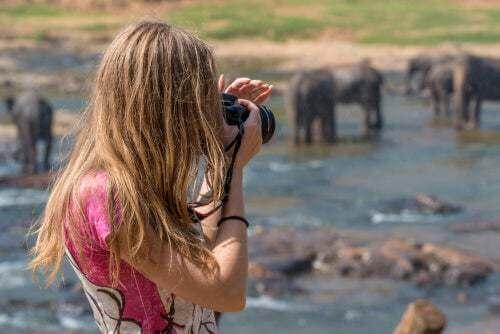 I migliori safari del continente africano