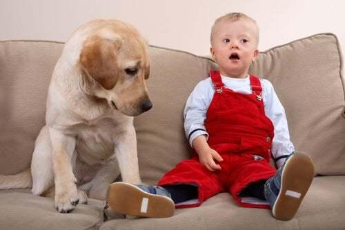Bambino con sindrome di Down accanto al suo cane