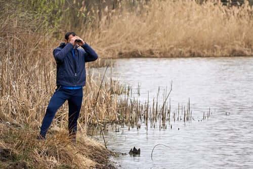 l'etologia si fonda sull'osservazione degli animali nel loro ambiente naturale
