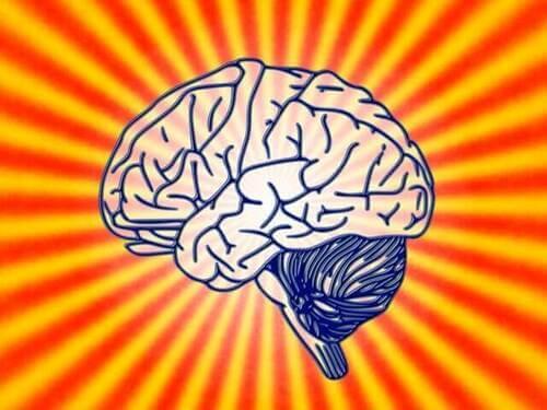 Scopriamo insieme cos'è la psicobiologia