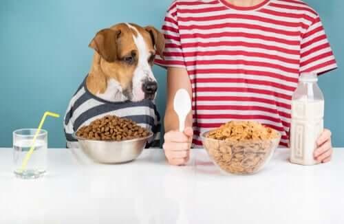 Cane e padrone di fronte al cibo