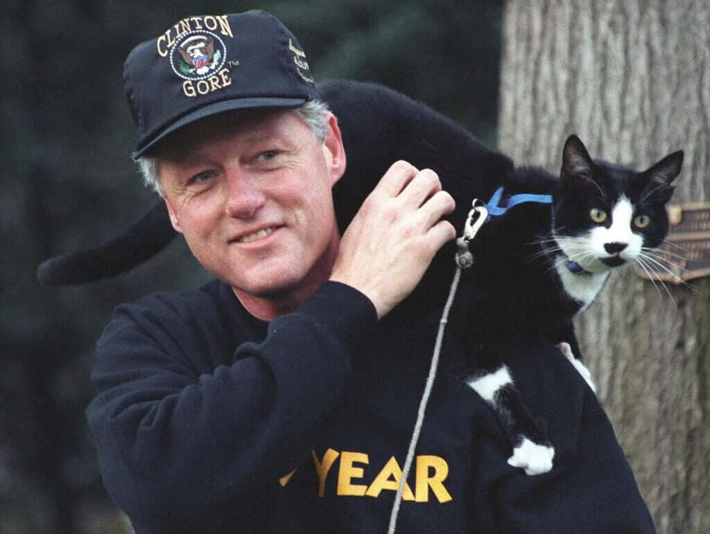 Socks il gatto di Clinton e il giorno internazionale del gatto