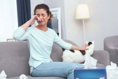 Controllare l'allergia ai gatti con 12 utili consigli