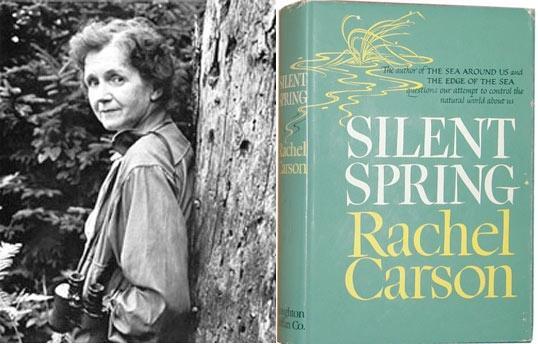 Libro Primavera silenziosa