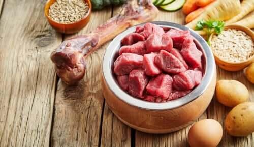 Recipiente pieno di carne. Le proteine sono tra i bisogni nutrizionali di un cane più importanti