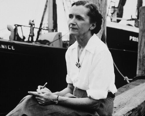 Rachel Carson: fonte di ispirazione per Greta Thunberg?