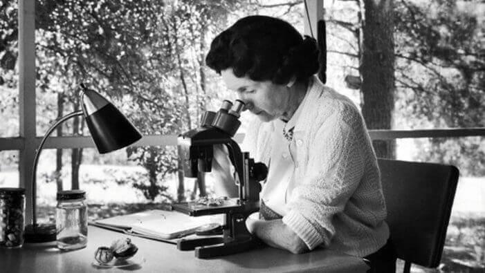Rachel Carson al microscopio