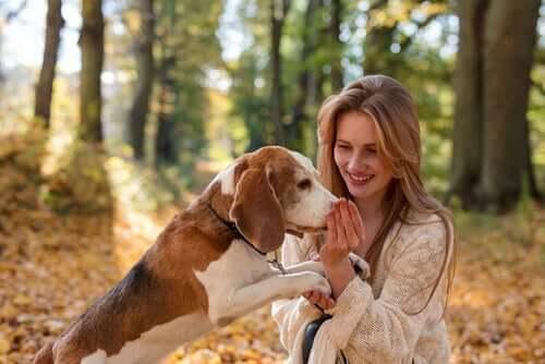 ragazza con il suo cane in un bosco
