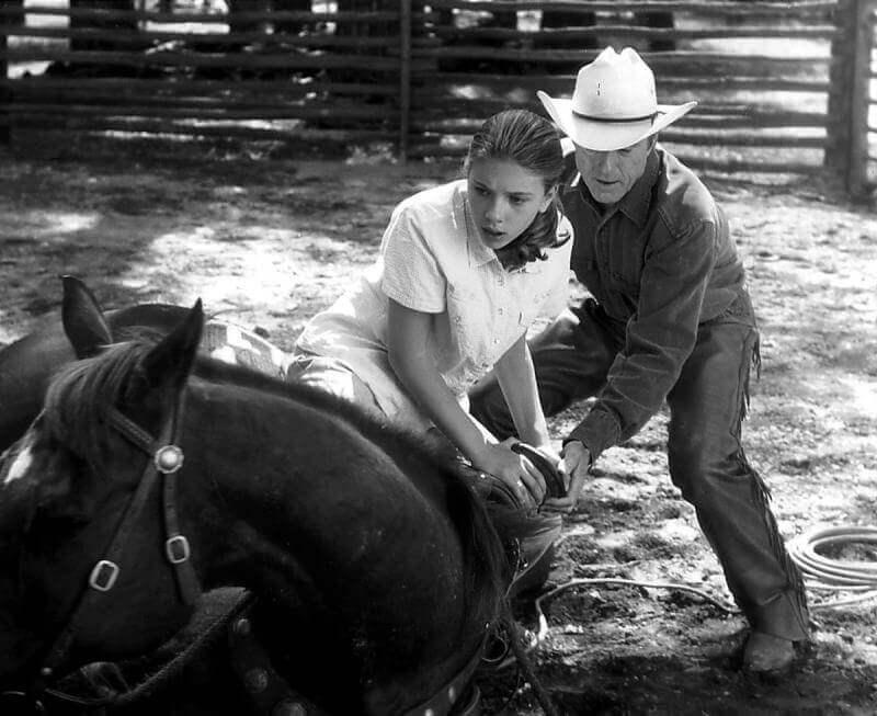 Scena L'uomo che sussurrava ai cavalli