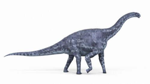 cetiosaurus, modellino in plastica