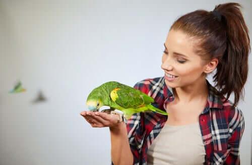 Ragazza con pappagallo
