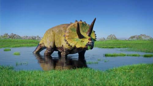 triceratopo in uno stagno, dinosauri erbivori