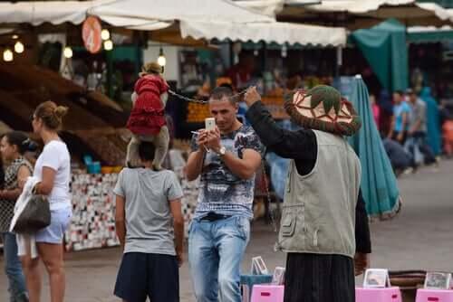 Turista fa un selfie con i macachi in Marocco.