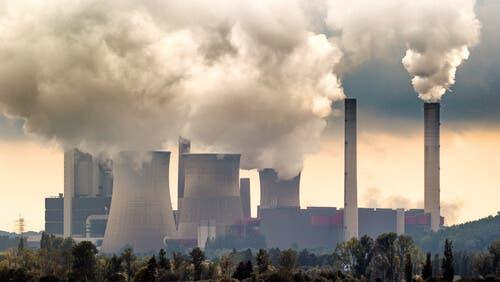 Gli effetti dell'inquinamento ambientale sugli ecosistemi