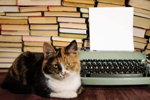 Gatti e letteratura