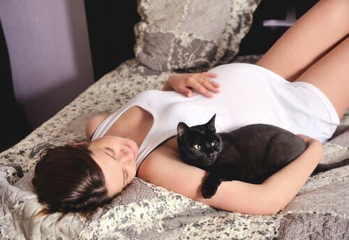 È pericoloso avere un gatto durante la gravidanza?