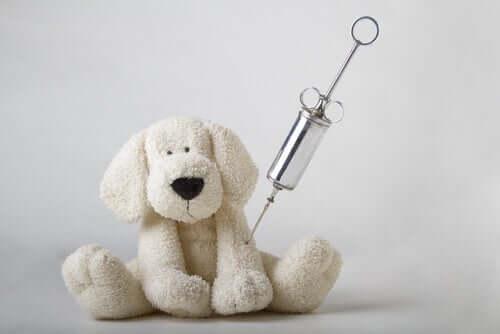 Vaccini animali, siringa e peluche