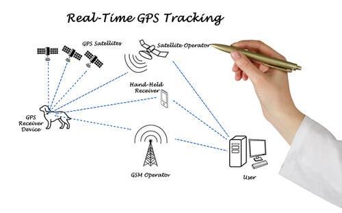i localizzatori GPS per cani sono in grado di monitorare lo stato di salute dell'animale