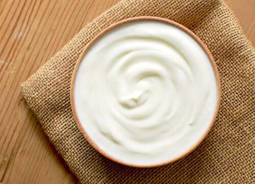 Yogurt con probiotici per il microbiota intestinale del cane