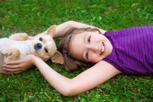 Principali incidenti domestici con cani di piccola taglia