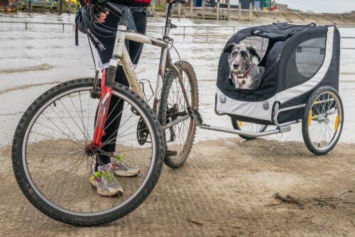 Carrello per cani da attaccare alla bicicletta