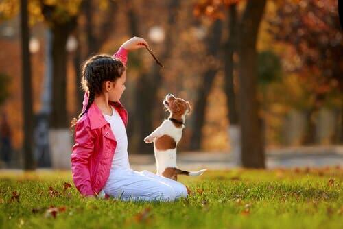 Bambina gioca con cane
