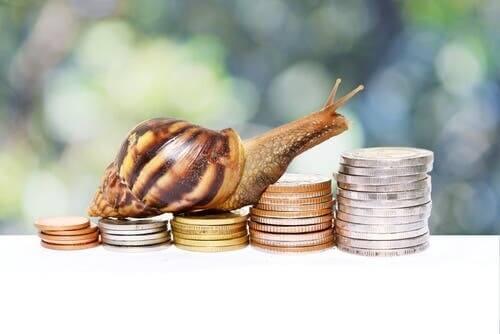 Animali raffigurati sulle monete: una pratica antichissima