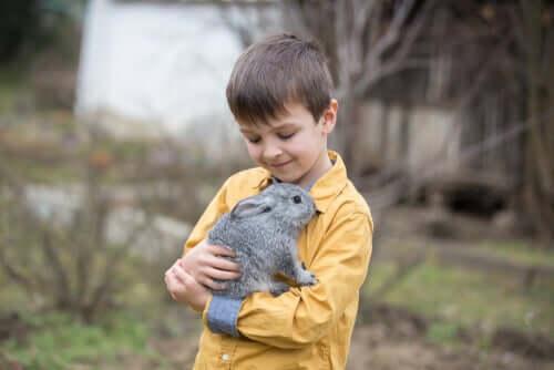 Bambino che abbraccia un coniglio.
