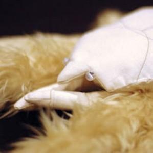 Le chele del granchio yeti ospitano un gran numero di microrganismi.