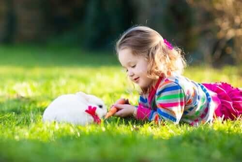 Pet therapy con i conigli: la terapia più tenera che c'è