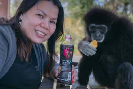 Fare selfie con i gibboni conduce questa specie al pericolo di estinzione.