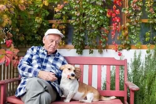 Anziano con cane sulla panchina.