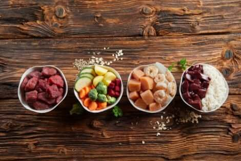 Diverse ciotole con alimenti vari: calcolo delle calorie per gli animali domestici.