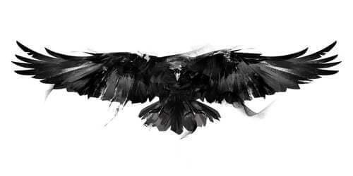 Dipinto ad olio di un corvo.