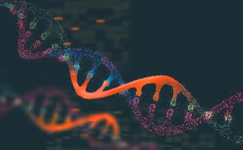 Genetica e popolazioni animali: perché è così importante?