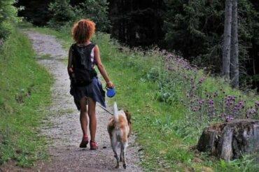 Cinque consigli per andare in campeggio con un cane