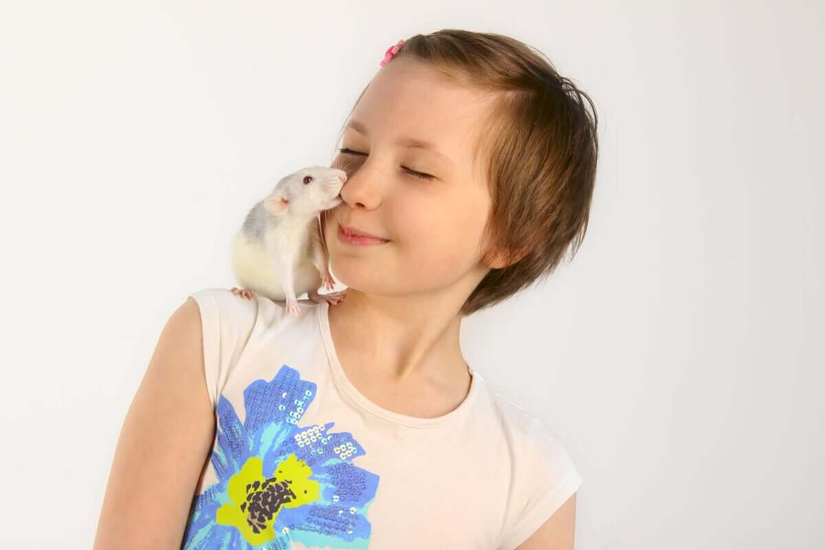 Bambina che gioca con un topo.