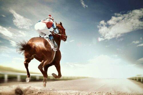 Le malattie più frequenti nei cavalli da corsa