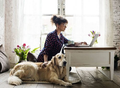 Donna che si prende cura del suo animale domestico dopo un intervento chirurgico.