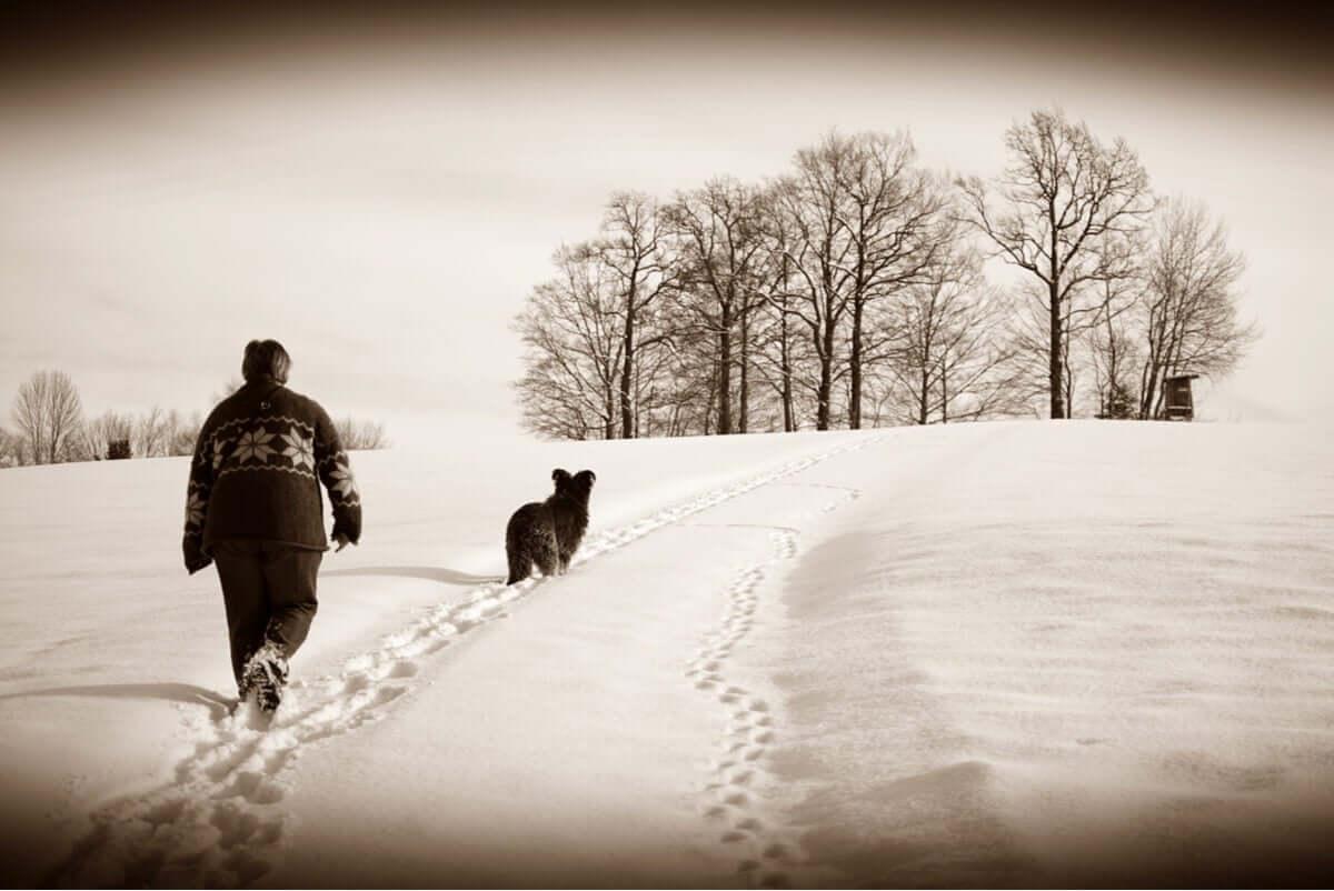 Passeggiata con il cane sulla neve.