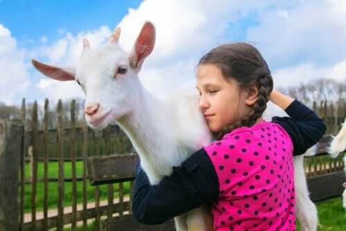 Bambina che abbraccia una capra.
