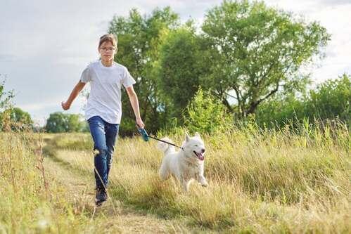 In Germania sarà obbligatorio portare a spasso il cane due volte al giorno