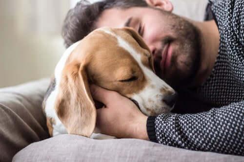 Padrone che abbraccia il suo cane.
