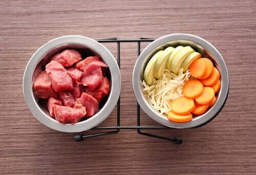 Cibo per cani. Ciotola con carne e verdure.