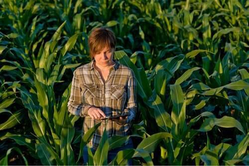 Donna in un campo.