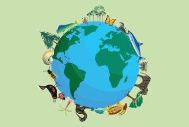 Quante specie animali esistono sulla Terra?