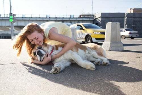 Donna che abbraccia il cane piangendo.