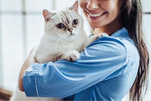 Gatto tra le braccia di una veterinaria.